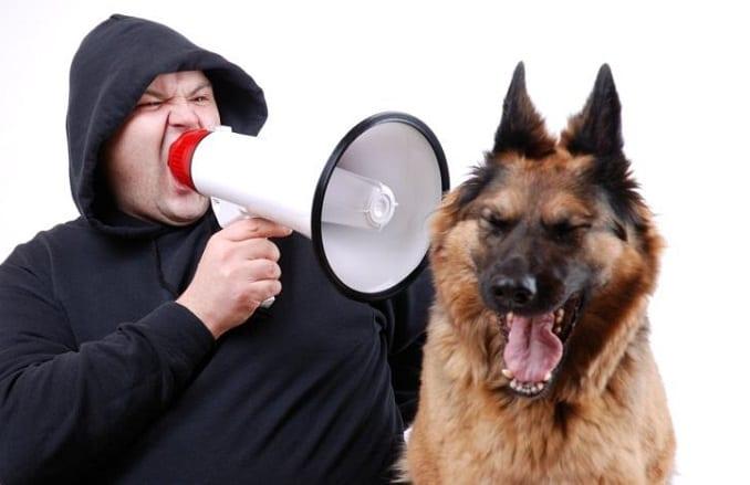 Man Yelling At Dog