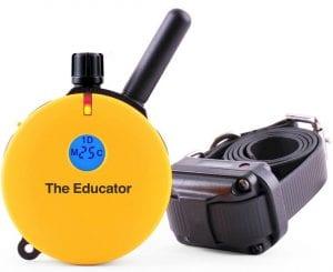 Educator E-Collar Remote Dog Training Collar Review