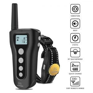 Peteme Dog Training Collar Rechargeable Review
