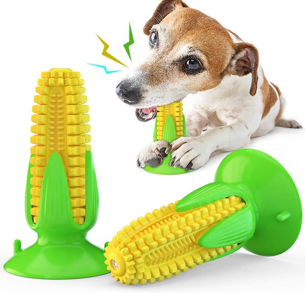 INSHERE Squeaky Dog Toothbrush Toy